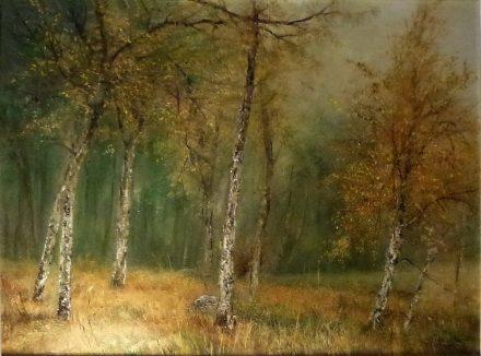 Nyírfaerdő